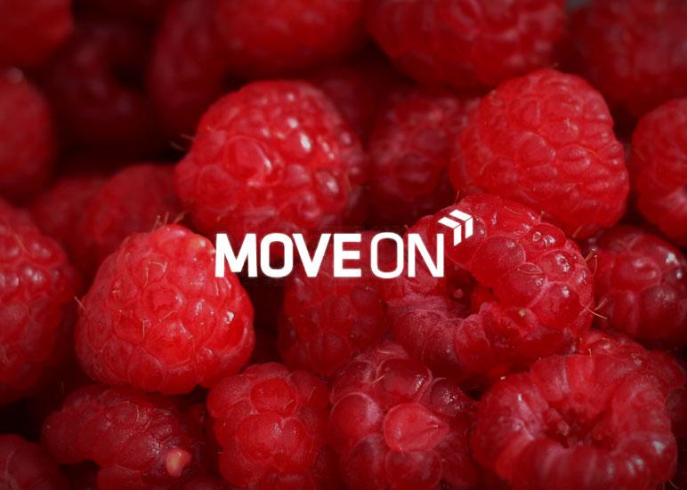 Projekt wstępny serwisu MoveON